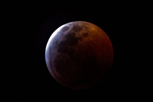 wolf blood moon january 2019 florida - photo #42