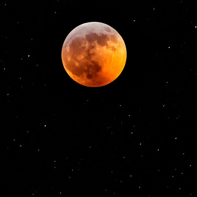 Super blood wolf moon 2019: The best photos from around Michigan