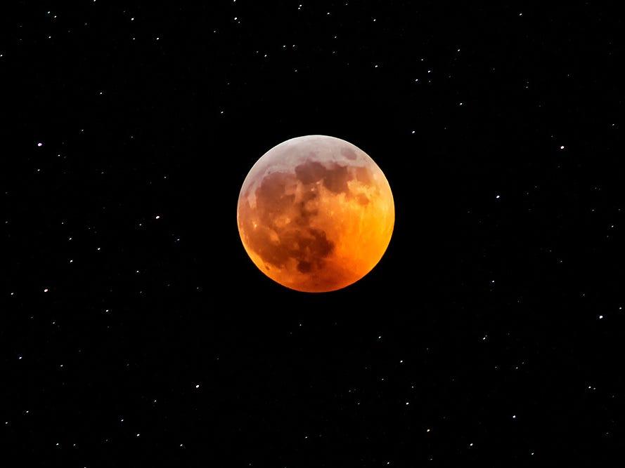 Super blood wolf moon 2019: The best photos from around Michigan