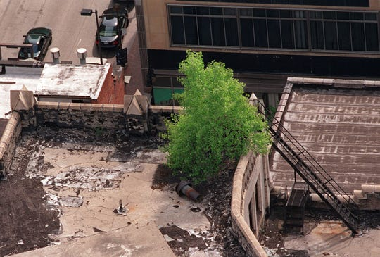 There was once a tree growing on the roof of the Metropolitan Building in downtown Detroit in the early 2000s photo.