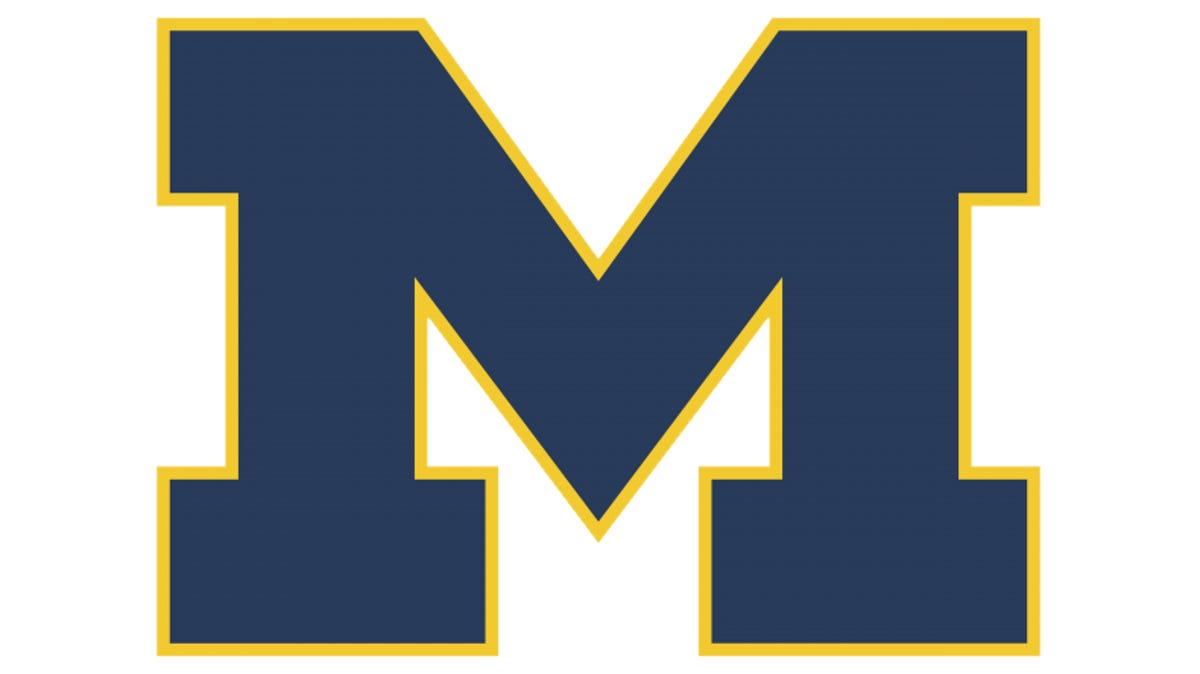 Michigan softball's Meghan Beaubien pitches no-hitter in NCAA Tournament opener 1