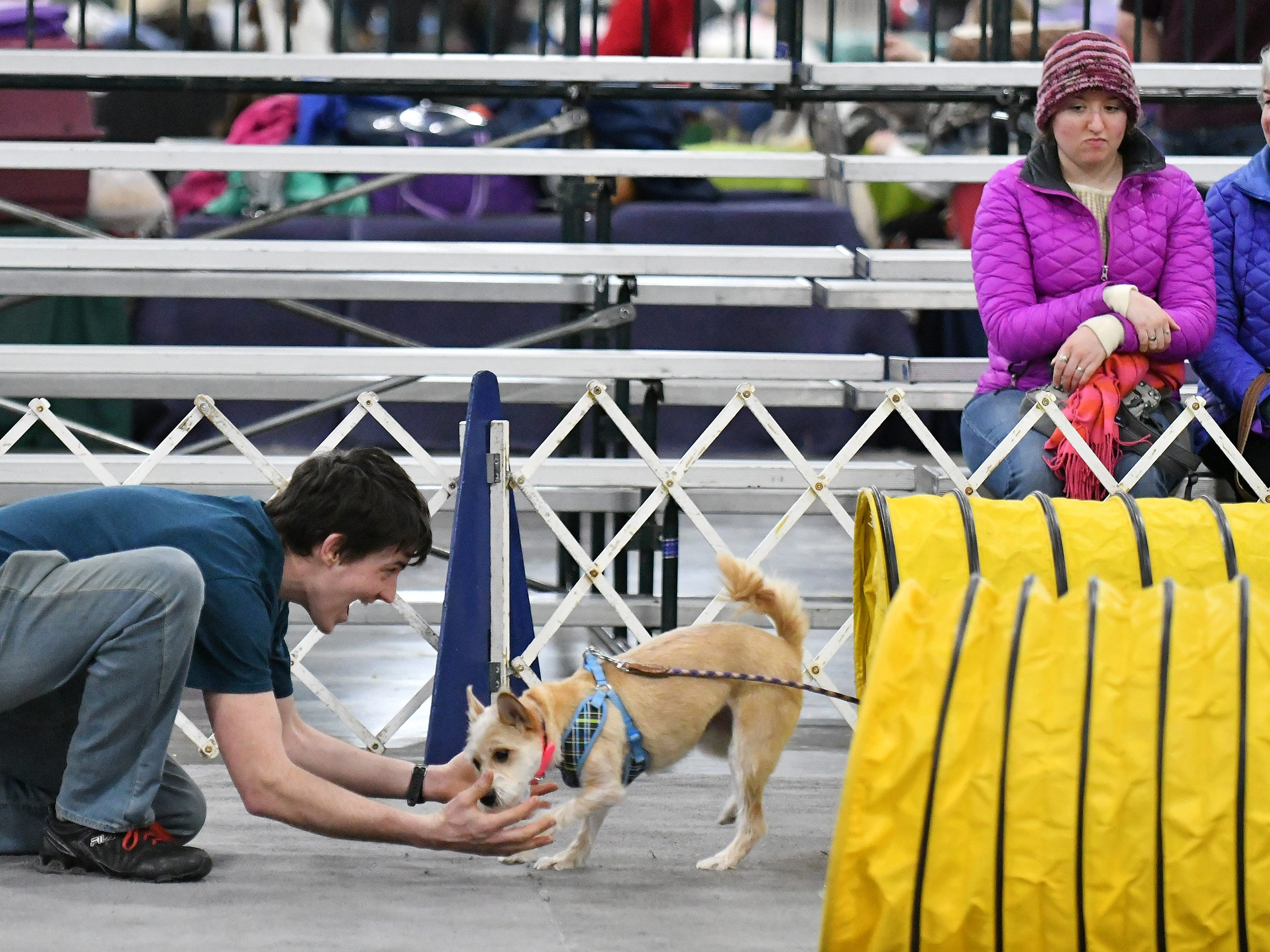 Brad Carothers of Roseville greets his dog, Daisy, after she runs through a tunnel at the agility course called My Dog Can Do That.