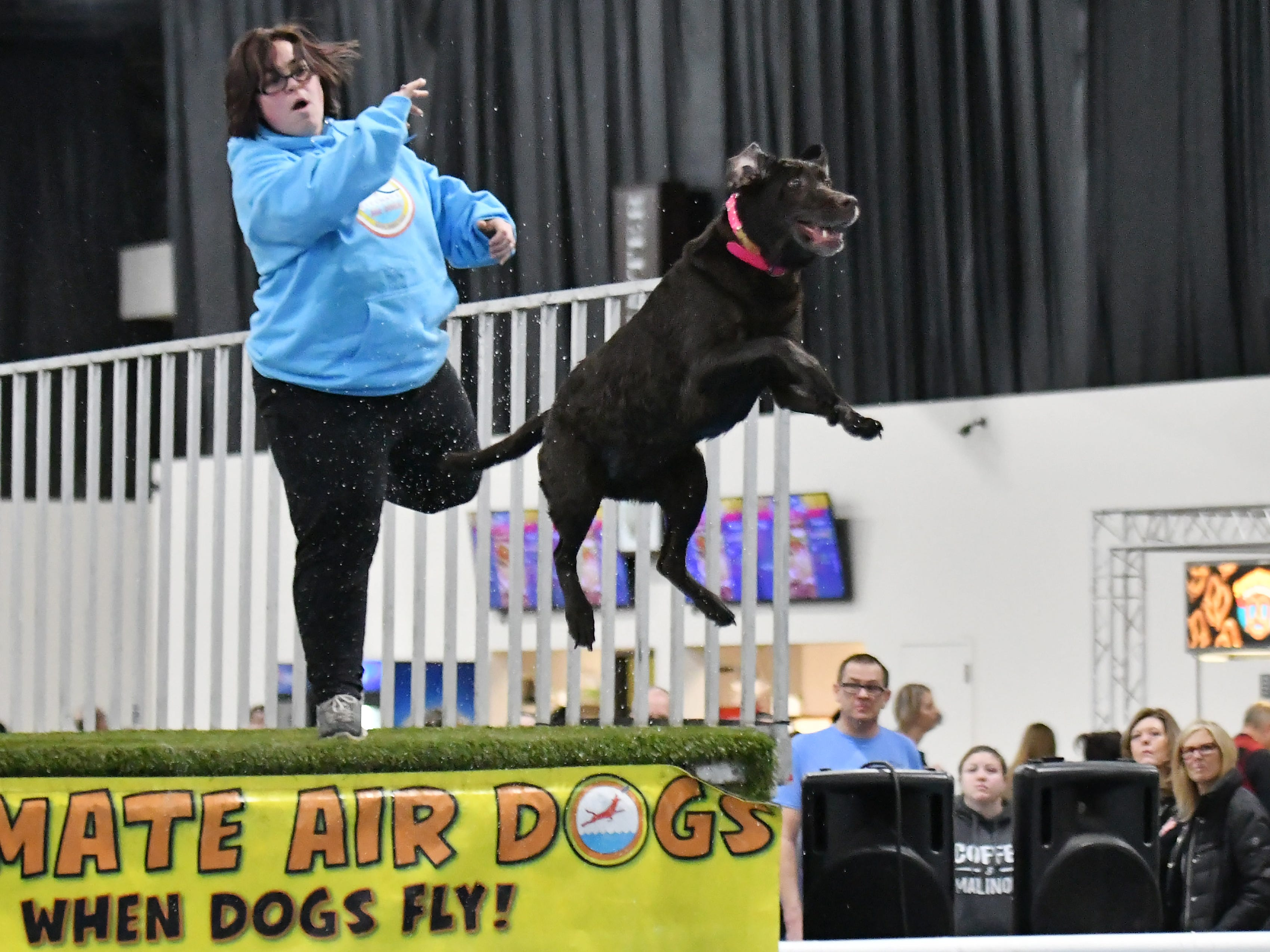 Candi Brown of Saginaw throws a toy for her chocolate Labrador, Kady, to leap for at the dock diving competition.