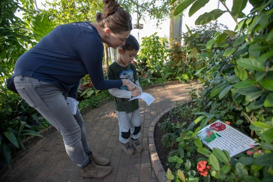 Holston Mavrick, Indianapolis, helps her son Silos Vergara, 6, out with a task called Rainforest Cultural Diversity scavenger hunt, at the Garfield Park Conservatory.