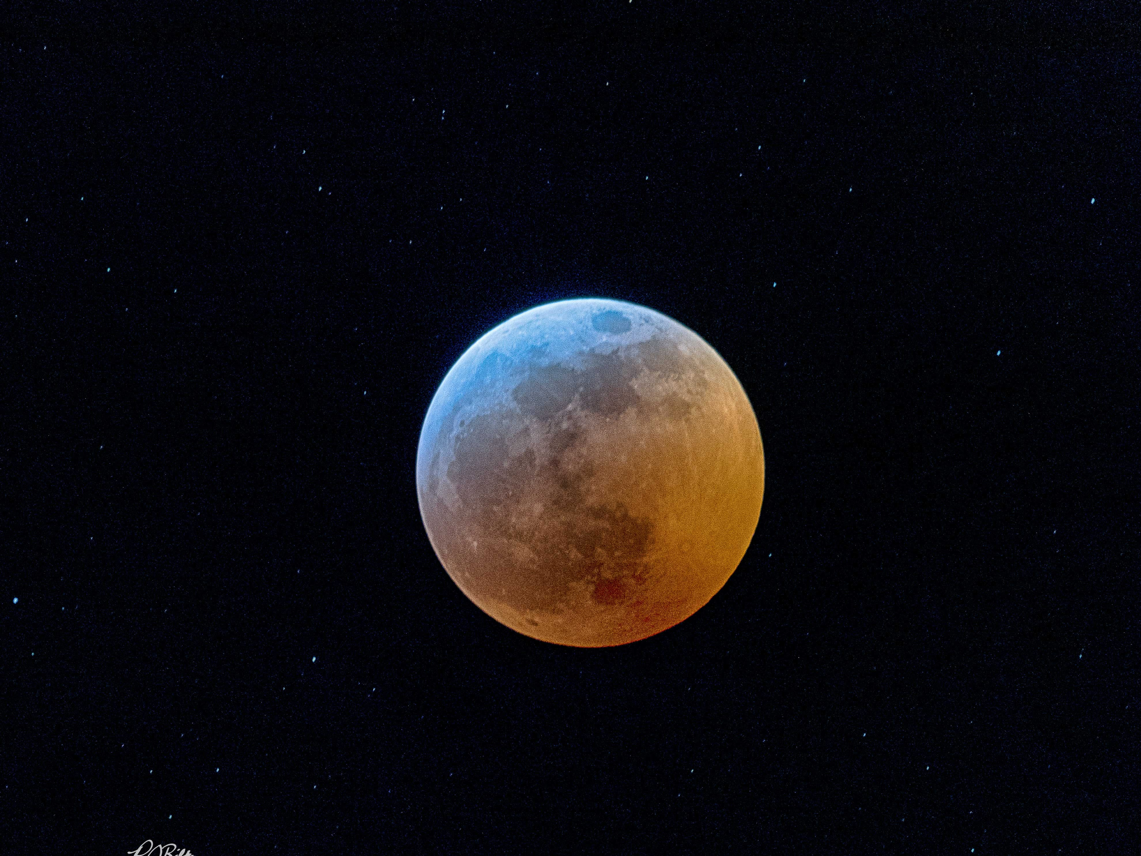 Robert Bilsky got this shot of the Super Wolf Blood Moon Eclipse from his front porch in Knoxville on Jan. 20, 2019.