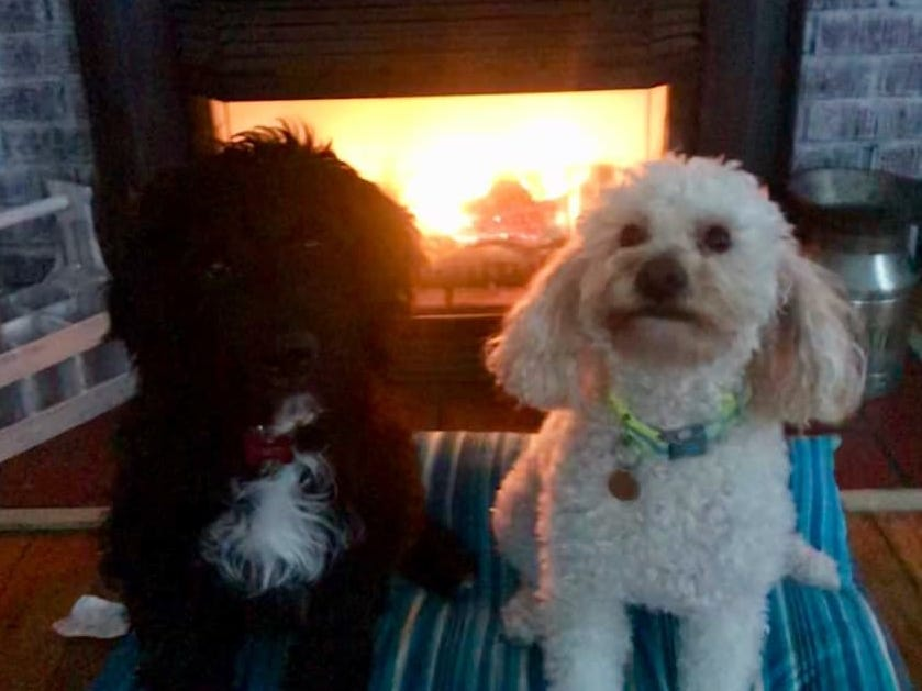 Mary and Brodie by the fire. Photo by Nicole Fess.