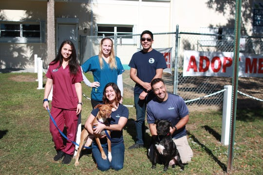 Humane Society of Indian River County representatives, from left, standing, Grace Mignone, animal care; Amy Yetts, clinic supervisor; and Anselmo Aponte, Outreach coordinator; sitting, Kate Meghji, executive director; and Marcel Goncalves, senior behaviorist.