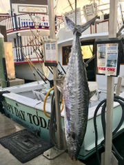 Reportedly a 97.8-pound potential world record king mackerel was caught Sunday aboard the charter boat Happy Day Today out of Fort Lauderdale. CONTRIBUTED PHOTO BY CAPT. TOM ZSAK