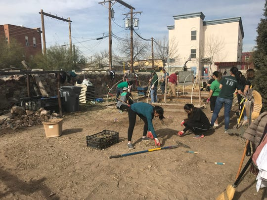 More than a dozen Texas Tech University Health Sciences Center El Paso pulled weeds and reworked the raised beds of the Magoffin Community Garden as part of Martin Luther King Jr. Day service projects.