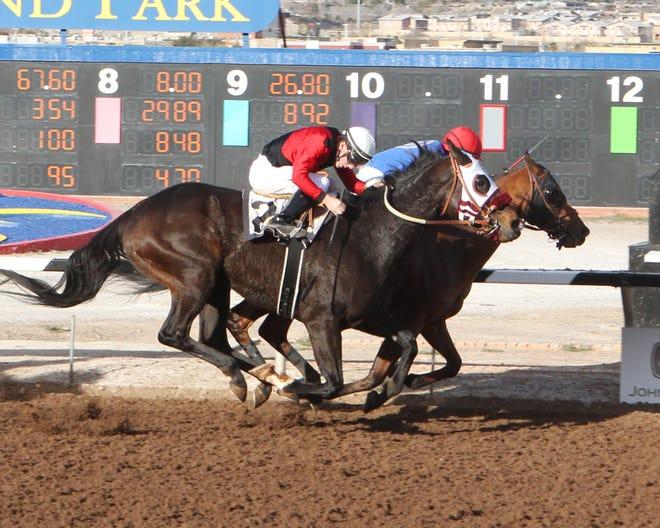 Blazing Navarone won the Albert Dominguez Memorial Handicap on Sunday at Sunland Park Racetrack & Casino.
