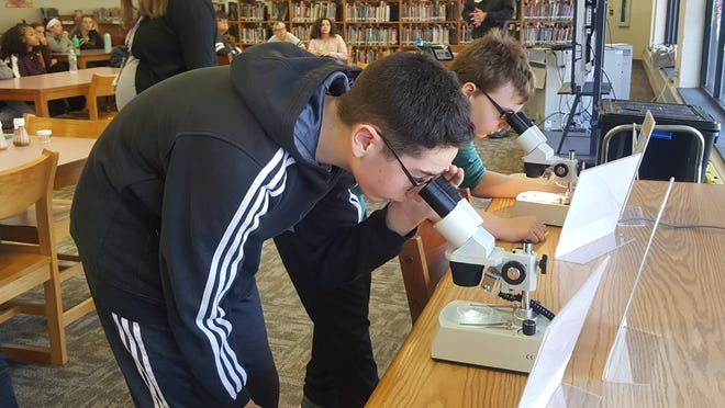 Ryan Battle (left) and Lee Bryan look through a microscope at a fruit fly during an honors science class at Delsea Regional Middle School.