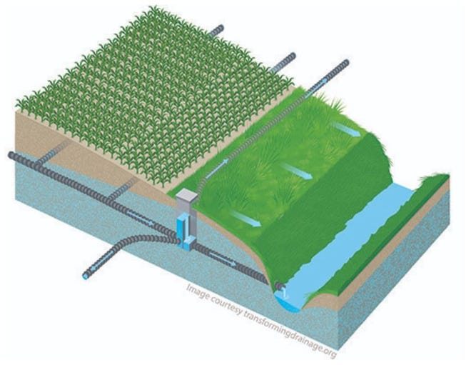A new conservation practice known as saturated buffers could reduce nitrogen from agricultural drainage by 5 to 10 percent.