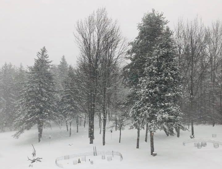 A snowy scene captured by a reader in Vestal.