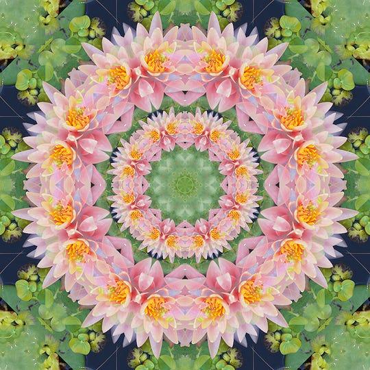 """Lotus"" byDanielle Wilkinson."