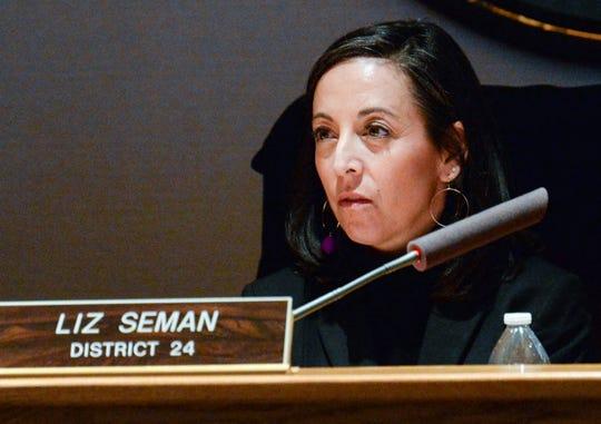 Liz Seman, Greenville County Council District 24, during the Greenville County Council meeting Tuesday, January 22, 2019.