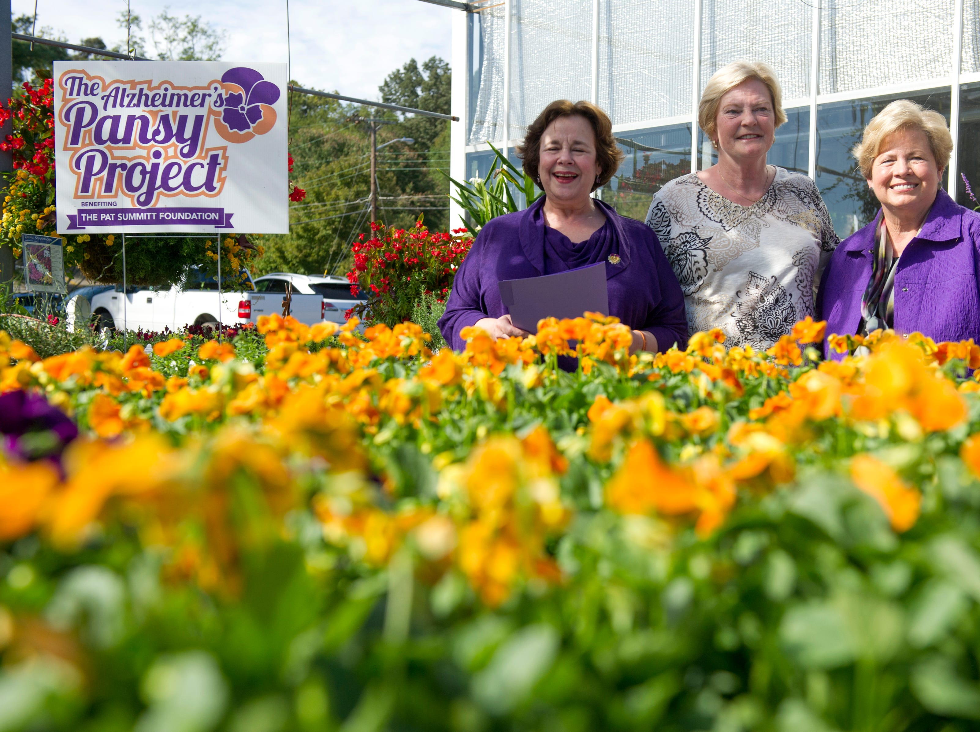 Former University of Tennessee basketball coach Pat Summitt (center) helps introduce during the kick-off of The Pat Summitt Foundation's fourth annual Alzheimer's Pansy Project with Susie Stiles (left) and University of Tennessee women's athletic director emeritus Joan Cronan (right) at Stanley's Greenhouse and Plant Farm Tuesday, Oct. 6, 2015. The project donates  seven dollars for every flat that is sold and intends to decorate Knoxville with purple and orange pansies in support for those with Alzheimers.