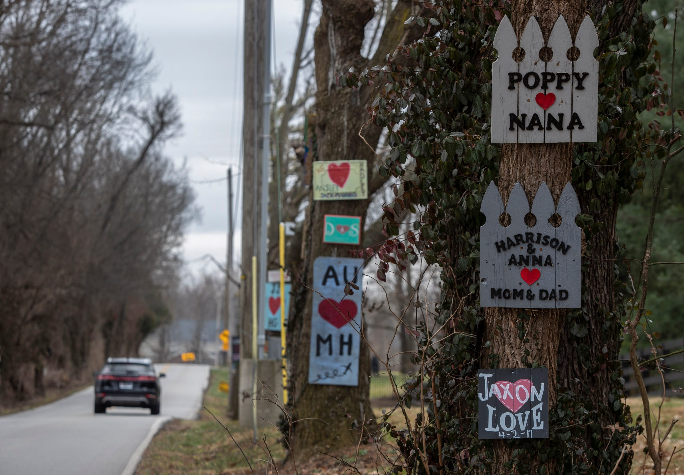 More love signs nailed to trees along Lovers Lane.