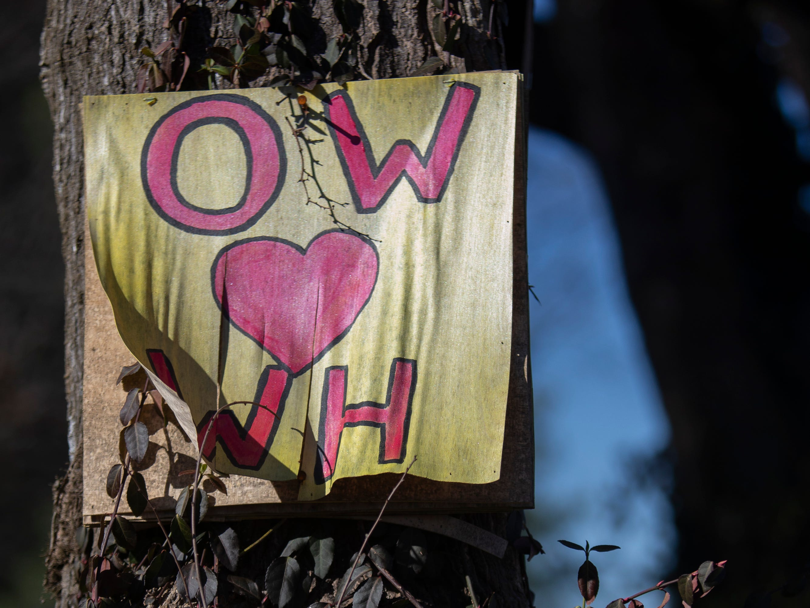 One of the love signs along the Lovers Lane stretch of Springdale Rd. Jan. 4, 2019.