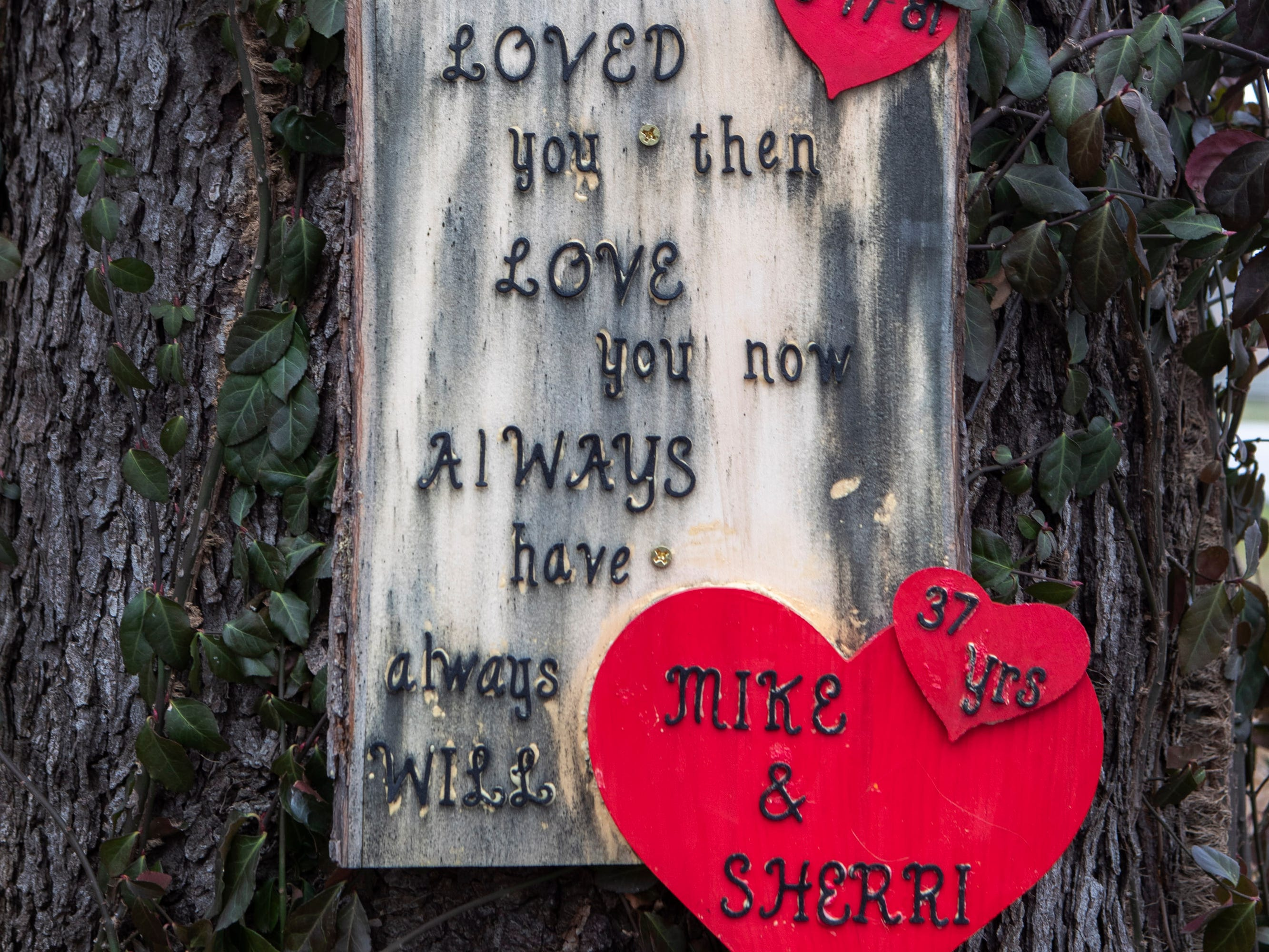 Signs of love nailed to the trees along Springdale Road in eastern Jefferson County. Jan. 4, 2019