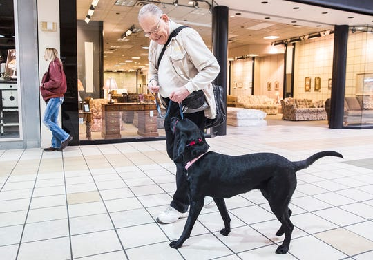 James Turner runs through exercises with service-dog-in-training Gracie at the Muncie Mall. Turner said training a service dog can take around 18 months and, with proper training, even shelter rescues can become service dogs.