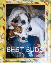A framed image made to memorialize the Turner's dogs at their home in Muncie.