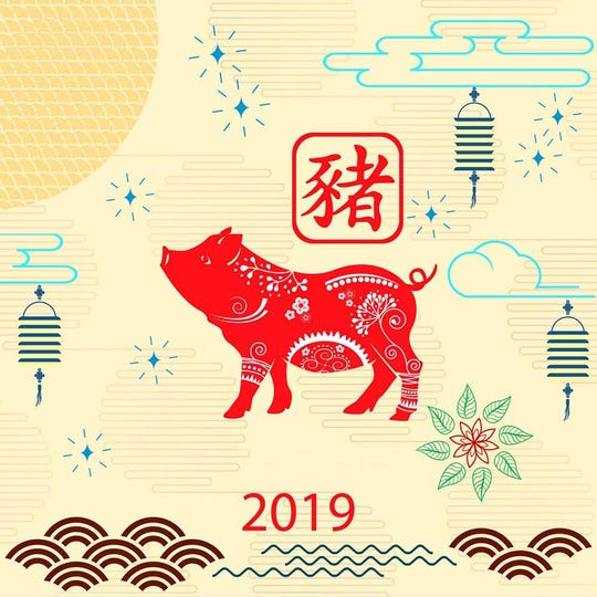 Happy Chinese new year 2019 card with pig (year of the boar).