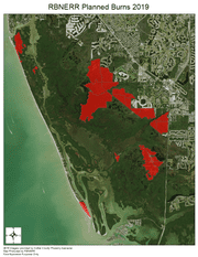 The boundaries of the 2019 planned burns at Rookery Bay.