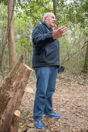 Rec Plex North Parkrun organizer Robin Foley talks about the work underway to clear the cross country path at the University of West Florida in Pensacola on Tuesday, January 22, 2019.