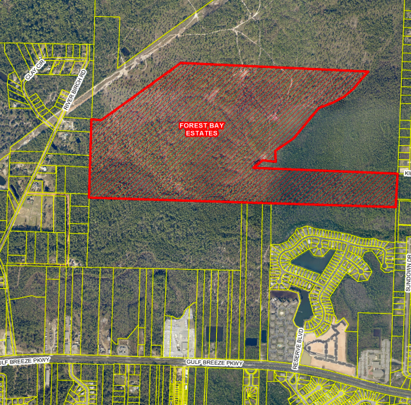 Gulf Breeze group opposes plans for 284-lot Forest Bay Estates subdivision in Midway