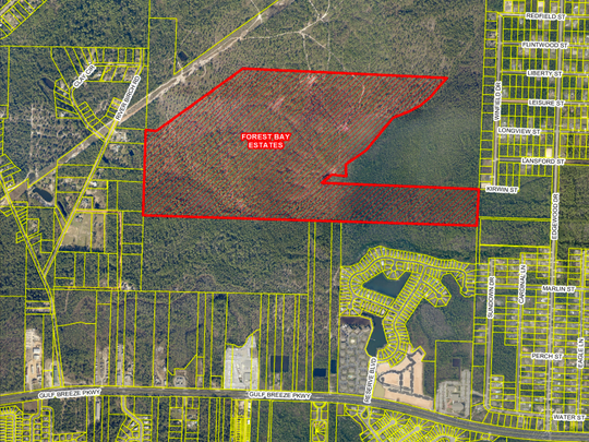 Forest Bay Estates is a 284-lot subdivision proposed for Gulf Breeze.