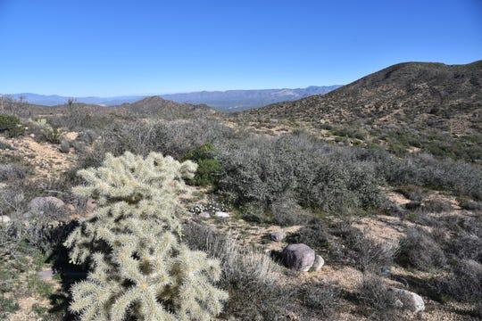 Overlooking the Verde River Valley.