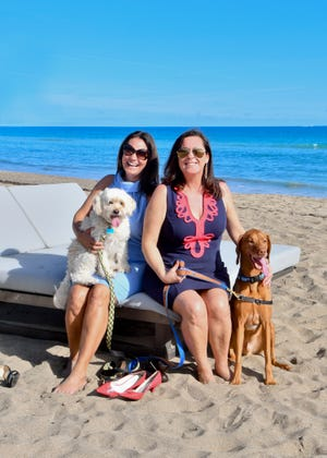 """Katie Astras with Scrappy, left, and Jennifer Campbell with Sully have been working hard planning the 2019 """"Paws &Claws"""" gala — themed """"Salty Dogs and Cat-A-Marans""""— from 6 to 11 p.m. Feb. 9 atHutchinson Shores Resort & Spa, 3793 N.E. Ocean Blvd., Jensen Beach."""