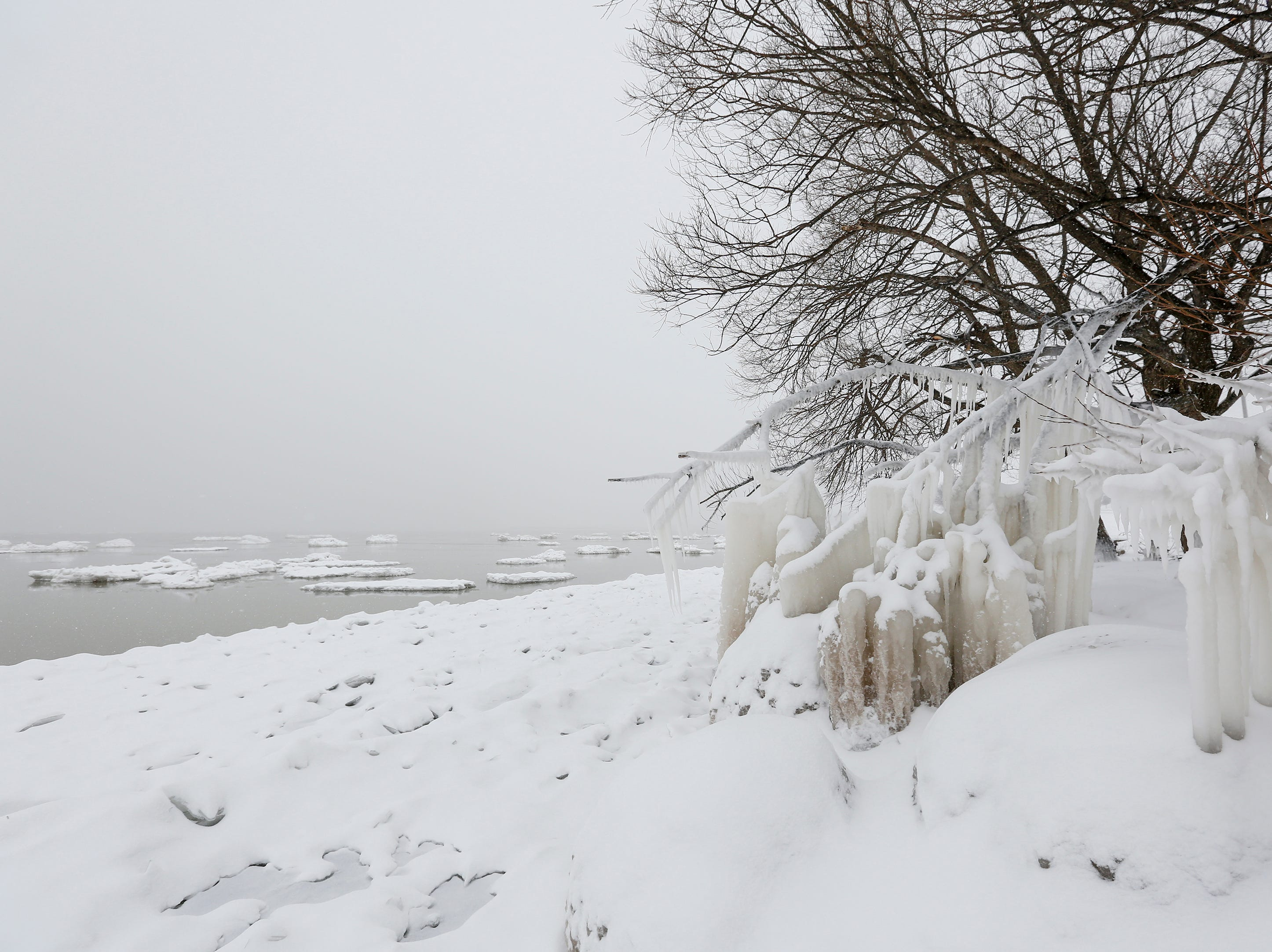Icicles hang from a tree along Lake Michigan during a snowstorm Wednesday, January 23, 2019, in Manitowoc, Wis. Joshua Clark/USA TODAY NETWORK-Wisconsin