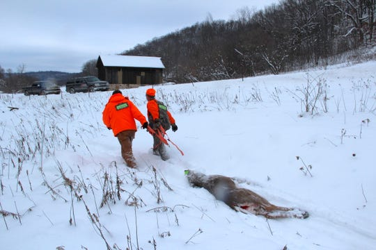 Hunters drag an antlerless deer shot during a hunt in Richland County. A proposed pilot program would pay hunters and landowners who register CWD-positive deer in an effort to slow the spread of the fatal deer disease.