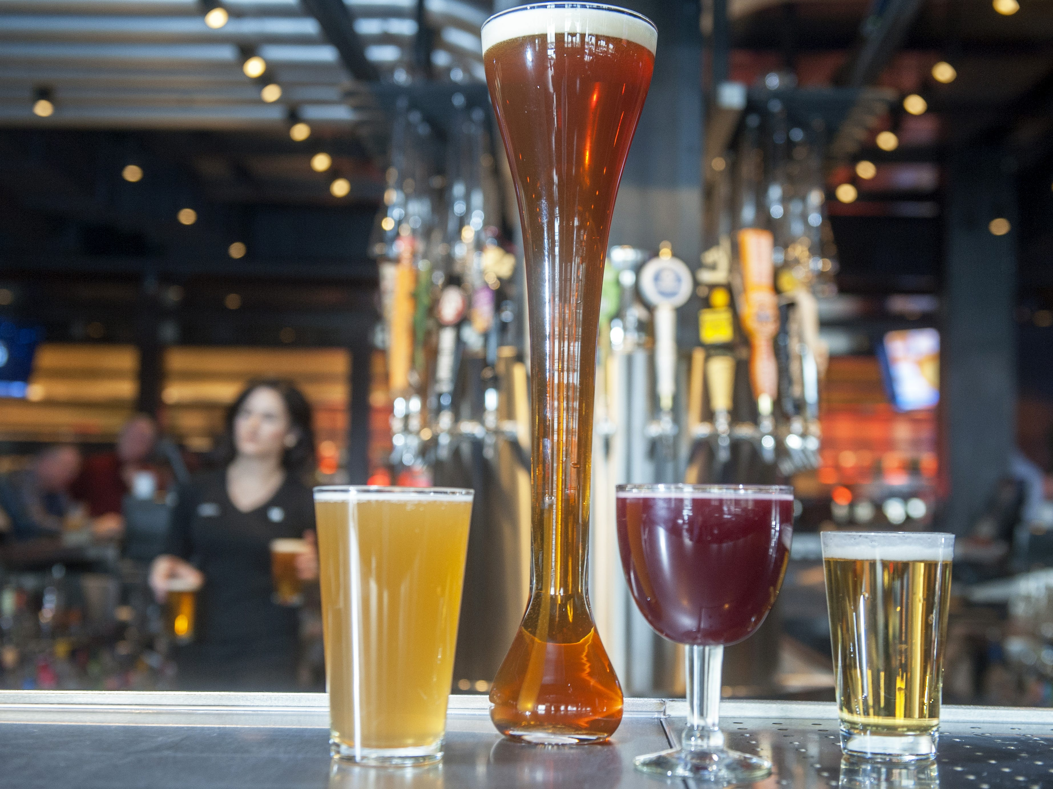 A pint of the Yard House's house white ale, a half yard of the Yard House's house IPA, a goblet of Lindemans Framboise, and a 9-ounce shorty of Stella Artois at Yard House.