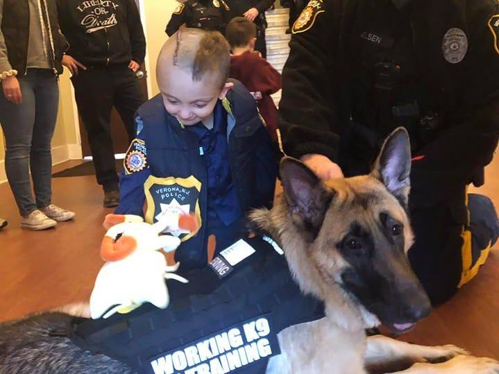 Micco LaRosa meets a K-9 officer at the Verona Police Department Jan. 20, 2019.