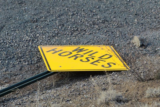 Wild horse traffic warning sign was found knocked down on New Mexico Highway 48 north of Ruidoso.