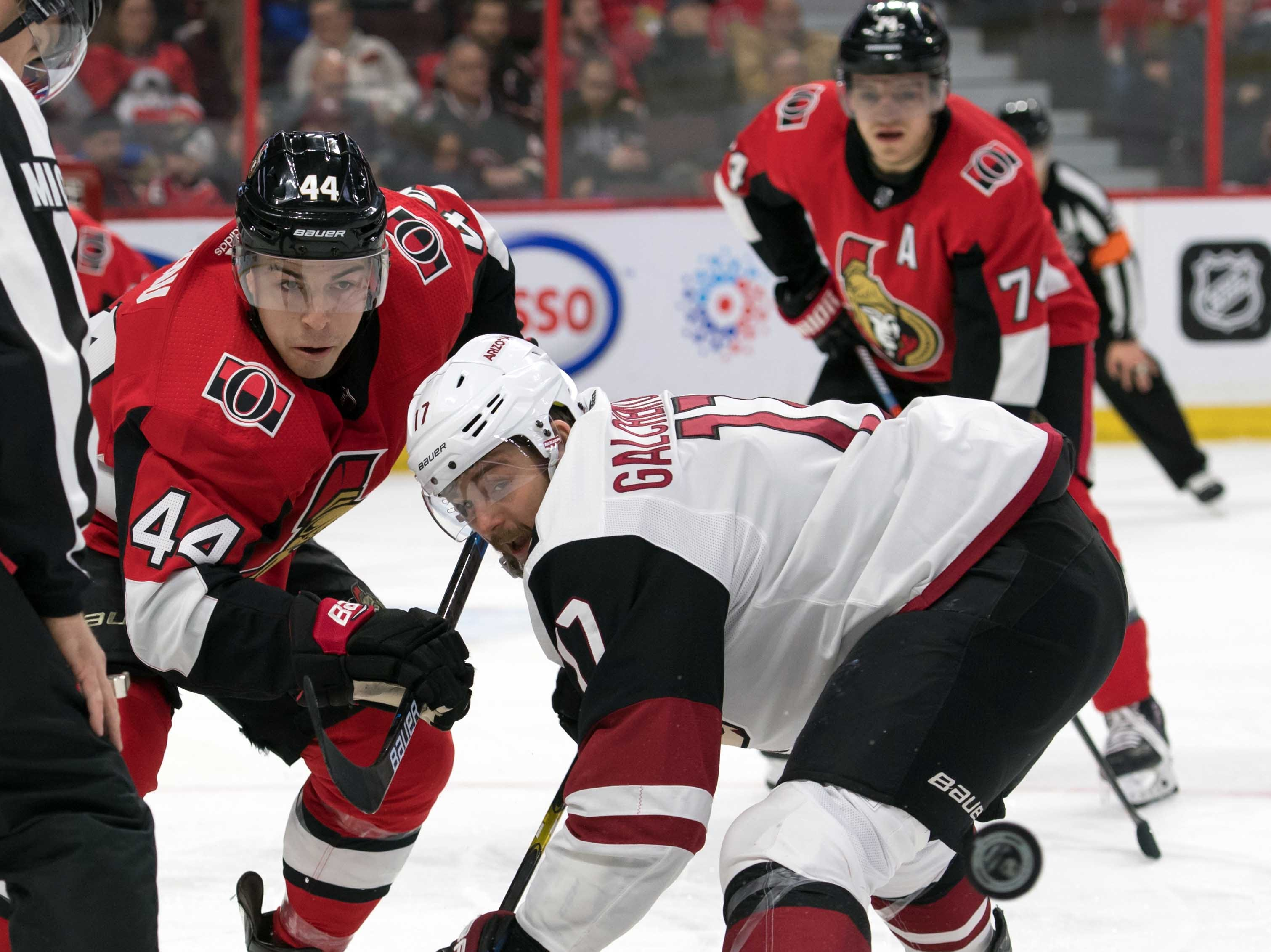 Jan 22, 2019; Ottawa, Ontario, CAN; Ottawa Senators center Jean-Gabriel Pageau (44) faces off against Arizona Coyotes center Alex Galchenyuk (17) in the first period at the Canadian Tire Centre. Mandatory Credit: Marc DesRosiers-USA TODAY Sports