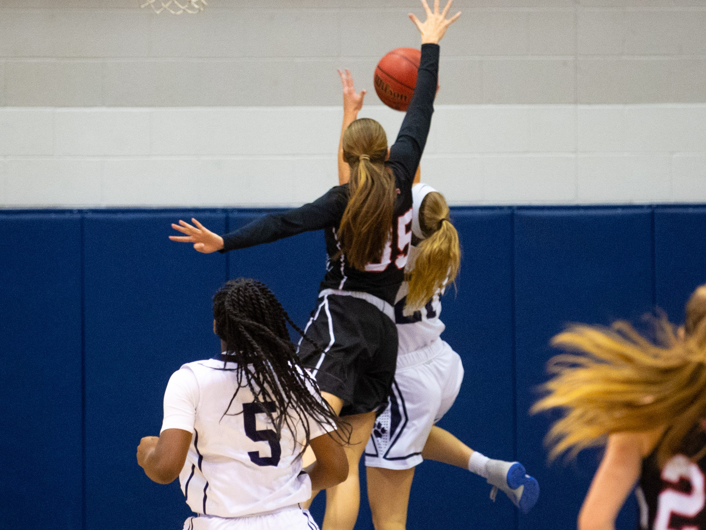 Taylor Geiman (35) of South Western rejects a Dallastown layup during the YAIAA girls' basketball game, Tuesday, January 22, 2019. The Wildcats defeated the Mustangs 38-35.