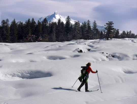 A skier makes way across the lava flows with Mt. Washington in the background.