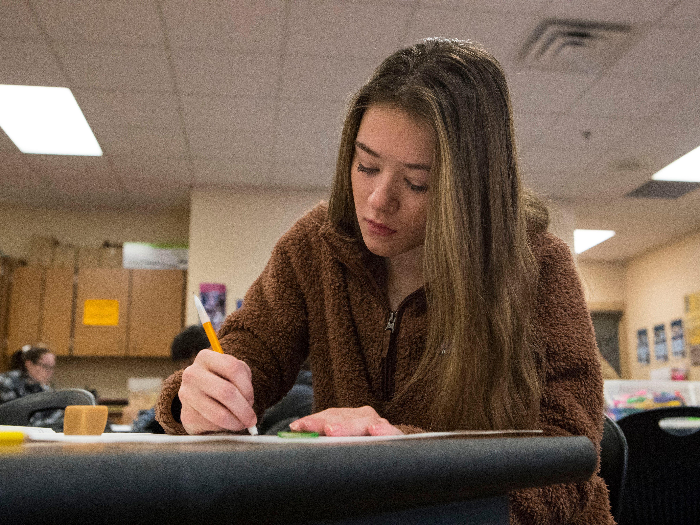 Amanda Moon, 16, participates in interior design class at Harrisburg High School, Wednesday, Jan. 23, 2019 in Harrisburg, S.D.