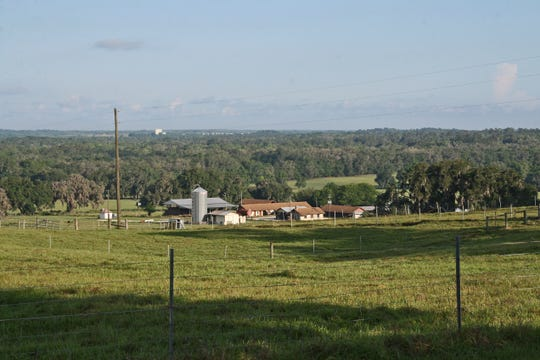Florida A&M University is exploring a proposal by Duke Energy Florida to build a solar farm at its 3,800-acre farm in Brooksville.