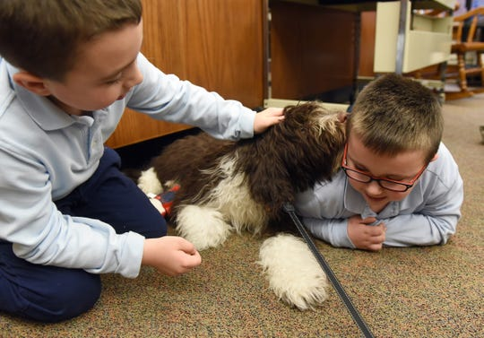 Brothers Elliott, 8, and Anthony Walther, 6, play with St. Francis de Sales School's therapy dog, Jaxson, after school in the library.