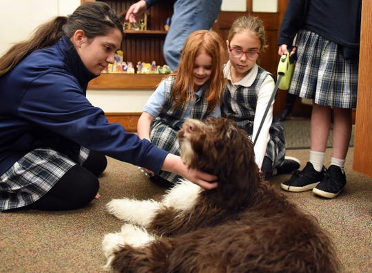 St. Francis de Sales School students Sofia Laviolette, Elizabeth Bucknam and Isla Ryen pet the school's therapy dog, Jaxson.
