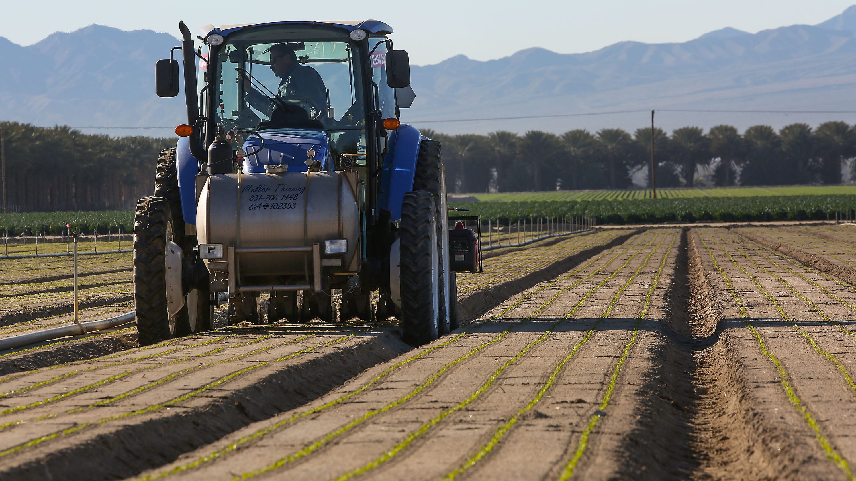 QnA VBage Could California produce soon cost you more? Farms face labor shortages, immigration woes