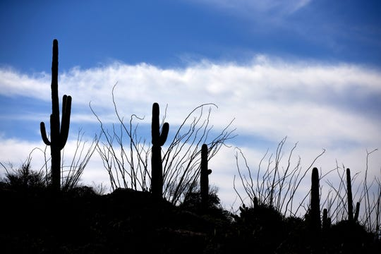 Since the Land and Water Conservation Fund was established decades ago, Arizona has put it toward programs that protect and preserve places like Saguaro National Park.