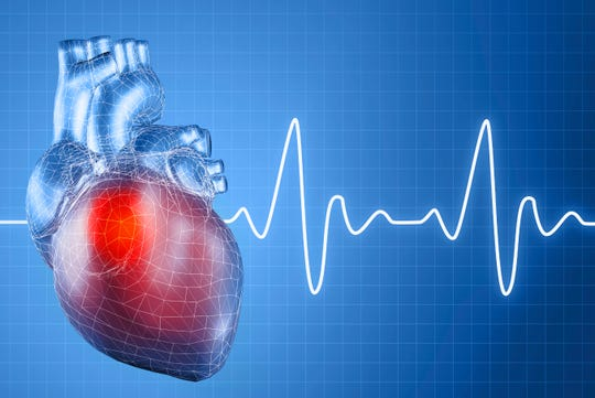 The value of heart and vascular screenings should not be underestimated.