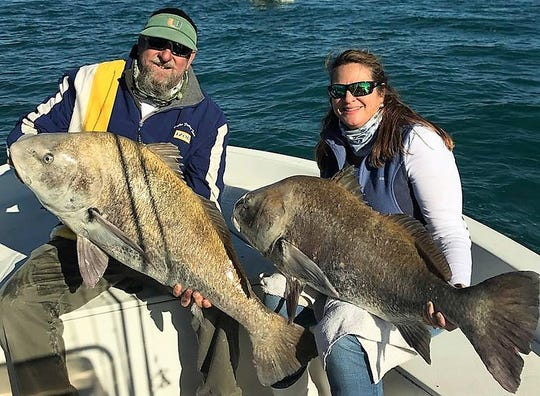 Kent and Stefani Hughes of Jensen Beach took a little road trip last weekend to fish with Capt. Troy Perez out of Port Canaveral where they found black drum up to 70 pounds and tripletail.