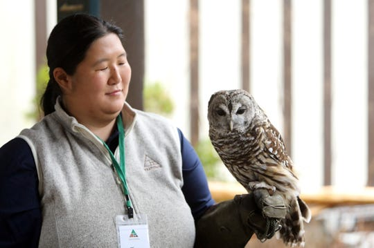Environmental educator Elissa Schilmeister holds Nova, a barred owl, at Teatown Lake Reservation in Ossining Jan. 24, 2019. The environmental education center announced plans for its 15th annual Teatown Hudson River EagleFest, which will take place on Saturday, February 9 at Croton Point Park in Croton-on-Hudson to celebrate the return of the bald eagle to the Hudson River Valley.