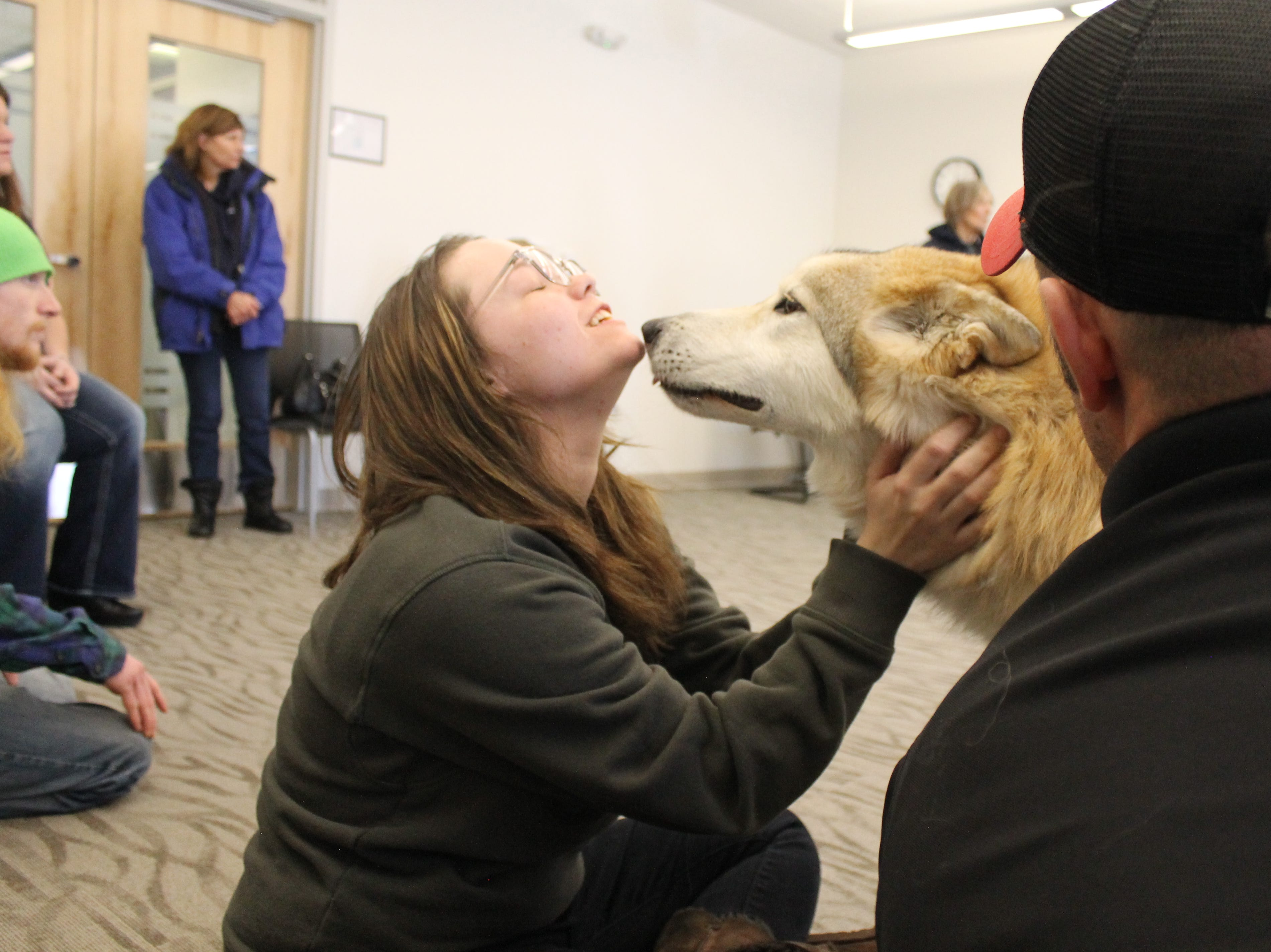 Kaity Doyle pets Takota, a wolf dog, during class at Front Range Community College Jan. 25. Doyle's design class will work for the next couple weeks on a project to benefit the W.O.L.F. Sanctuary.